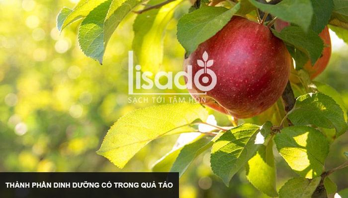 Thành phần dinh dưỡng có trong quả táo