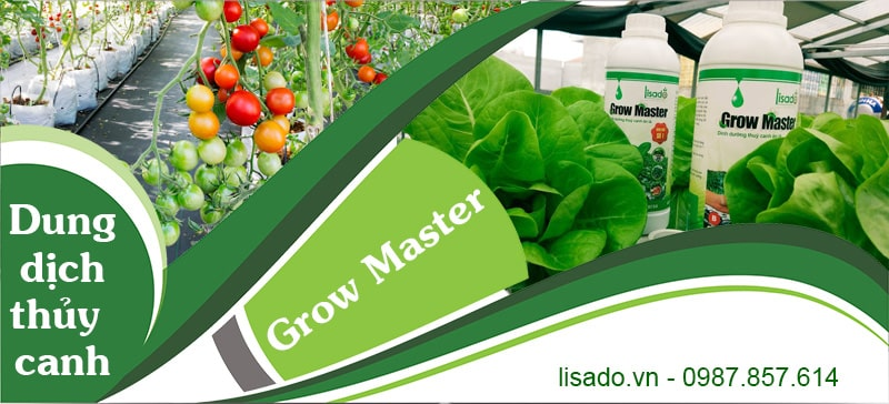 Dung dịch thủy canh Lisado Grow Master