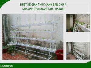 Thiết kế giàn thủy canh bán chữ A nhà Anh Thái (Nghi Tàm - Hà Nội)