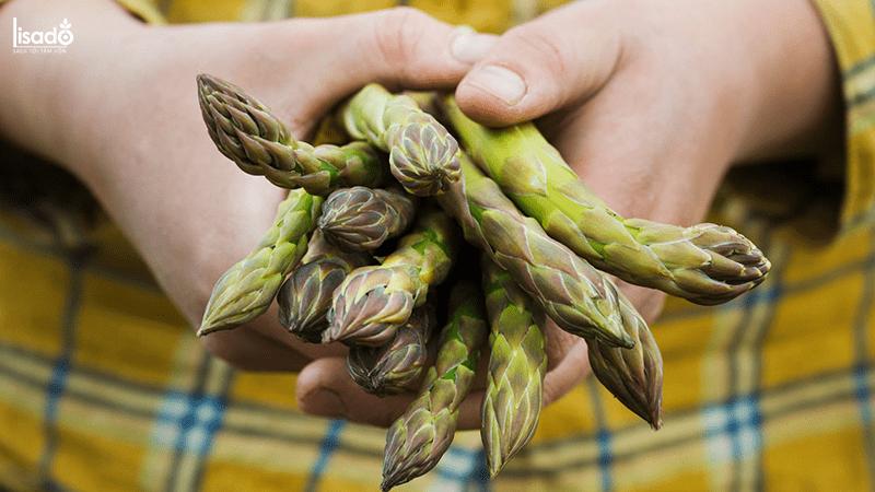 Công dụng của măng tây với sức khỏe thai nhi