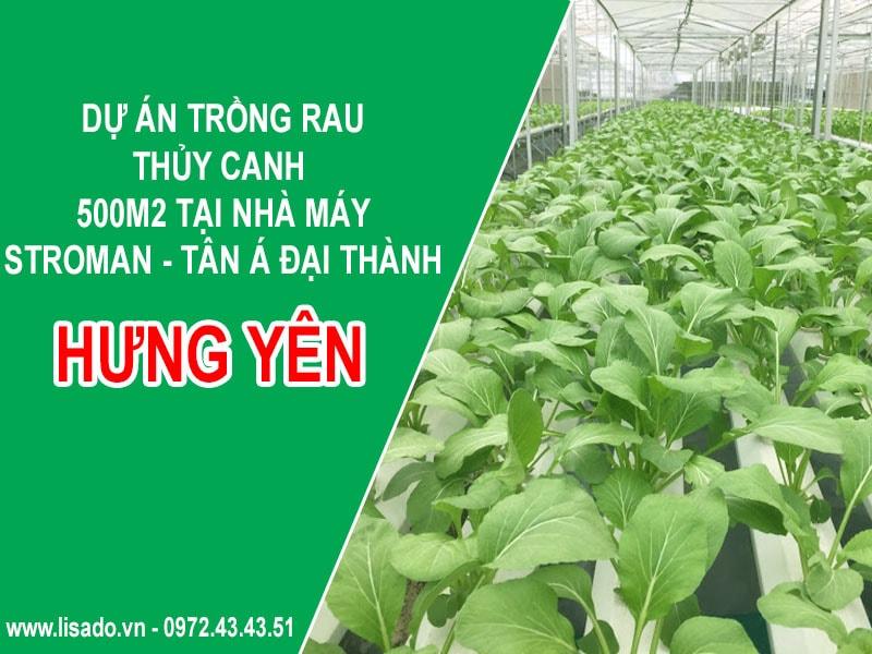 Dự án trồng rau thủy canh 500m2 tại nhà máy Stroman - Tân Á Đại Thành
