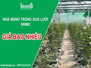 500m2 nhà màng trồng dưa lưới khoảng bao nhiêu?