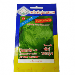 Hạt Giống Rau Xà Lách Búp Thái Lan