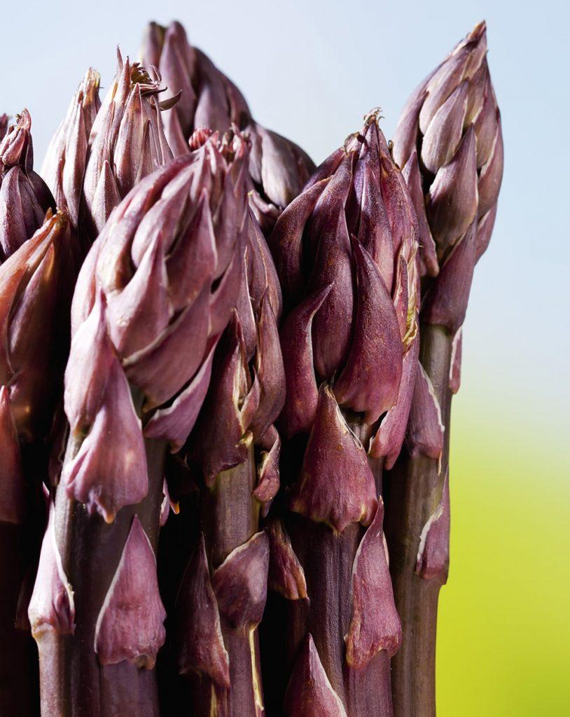 Hạt giống măng tây tím Purple Passion F1
