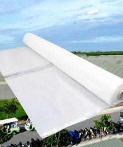 Màng phủ nhà kính Politiv khổ 2.2x100 mét