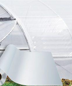 Màng phủ nhà kính Politiv - Israel khổ 6.2x100 mét nhập khẩu, giá tốt