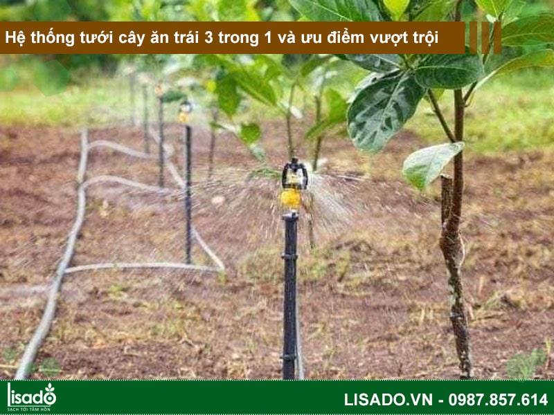 Hệ thống tưới cây ăn trái 3 trong 1 và những ưu điểm vượt trội