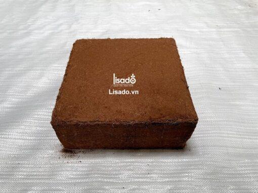 Mụn xơ dừa ép bánh 300x300x150 mm