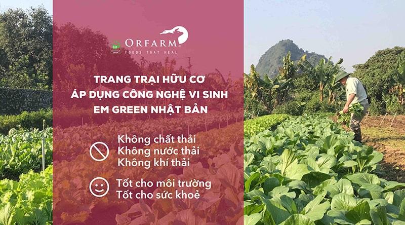 ORFARM – Food That Heal